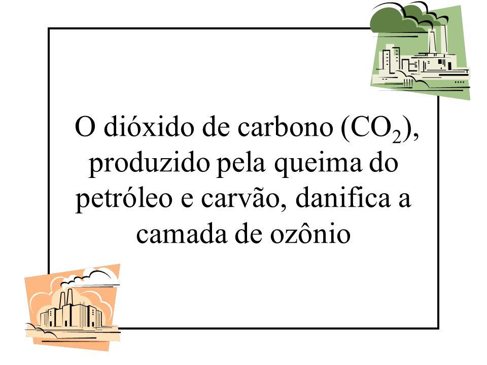 O dióxido de carbono (CO2), produzido pela queima do petróleo e carvão, danifica a camada de ozônio