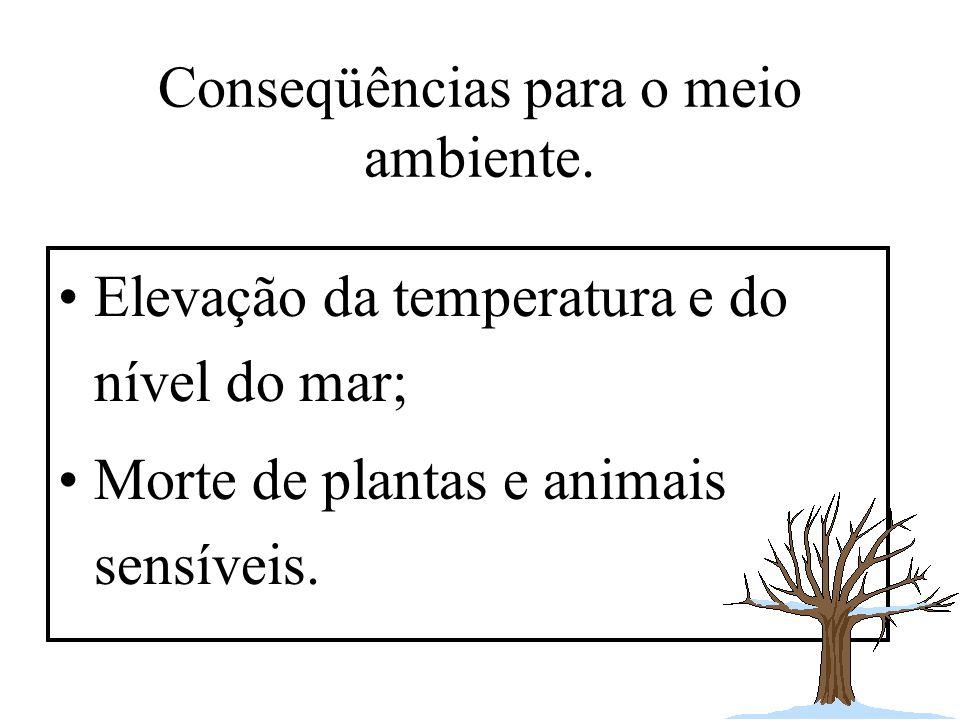 Conseqüências para o meio ambiente.