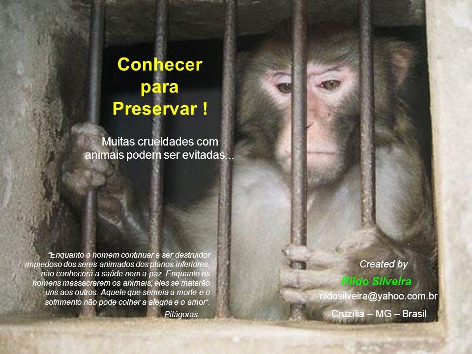 Conhecer para Preservar !