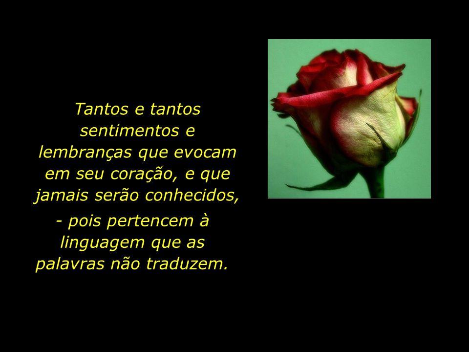 - pois pertencem à linguagem que as palavras não traduzem.