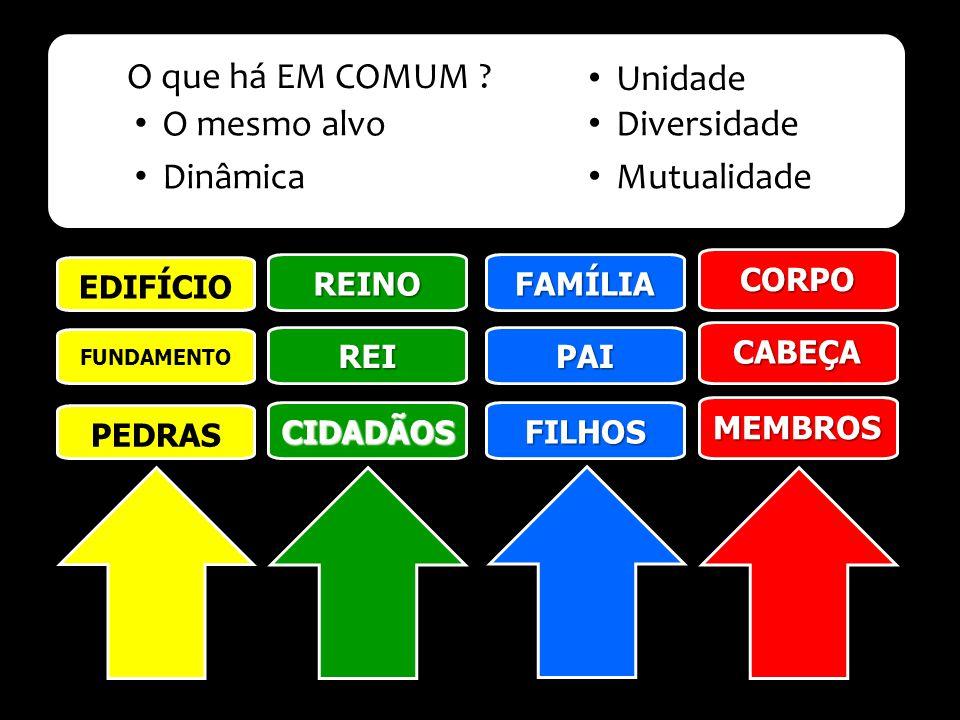 O que há EM COMUM Unidade O mesmo alvo Diversidade Dinâmica