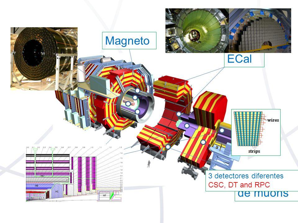 Magneto Trajetória ECal HCal Sistema de muons 3 detectores diferentes