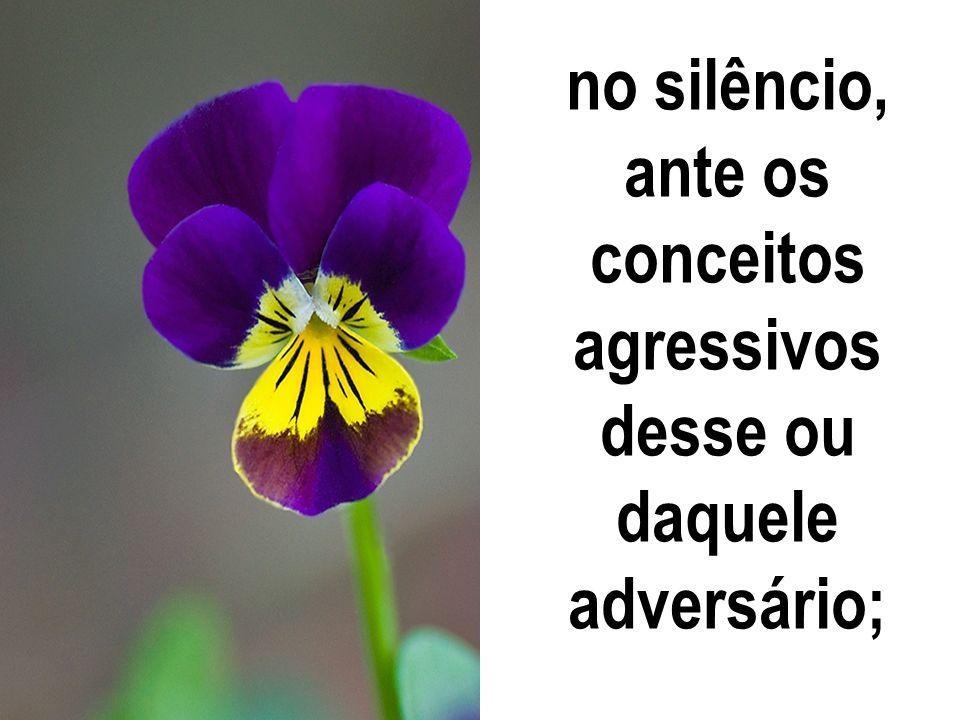 no silêncio, ante os conceitos agressivos desse ou daquele adversário;