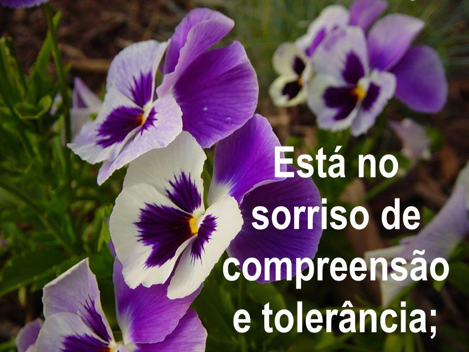 Está no sorriso de compreensão e tolerância;