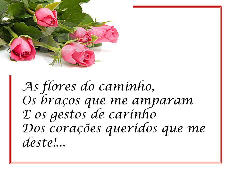 As flores do caminho, Os braços que me amparam. E os gestos de carinho.