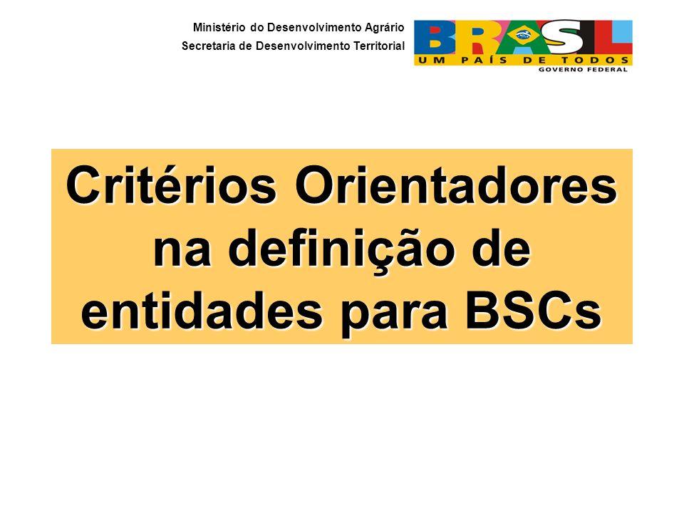 Critérios Orientadores na definição de entidades para BSCs