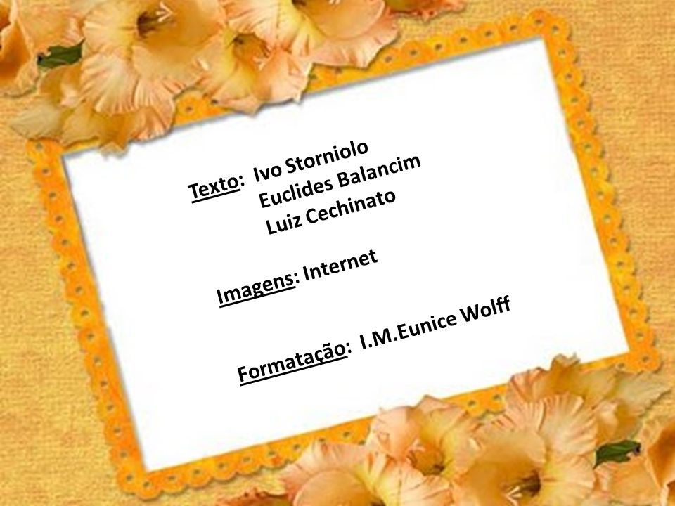 Texto: Ivo Storniolo Euclides Balancim. Luiz Cechinato.