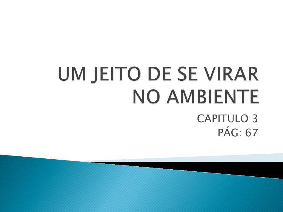 UM JEITO DE SE VIRAR NO AMBIENTE