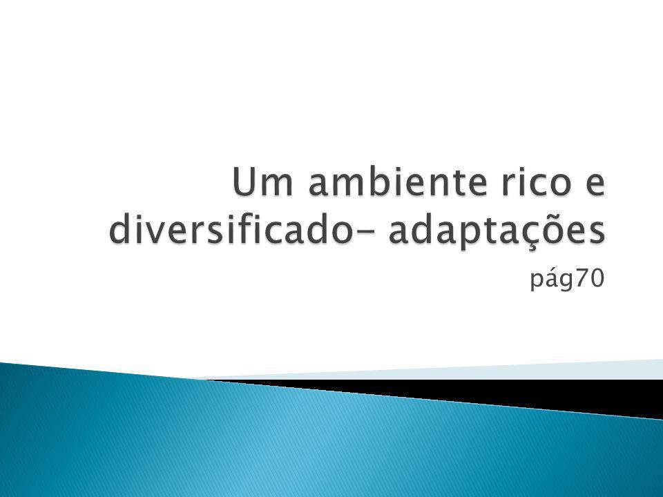 Um ambiente rico e diversificado- adaptações