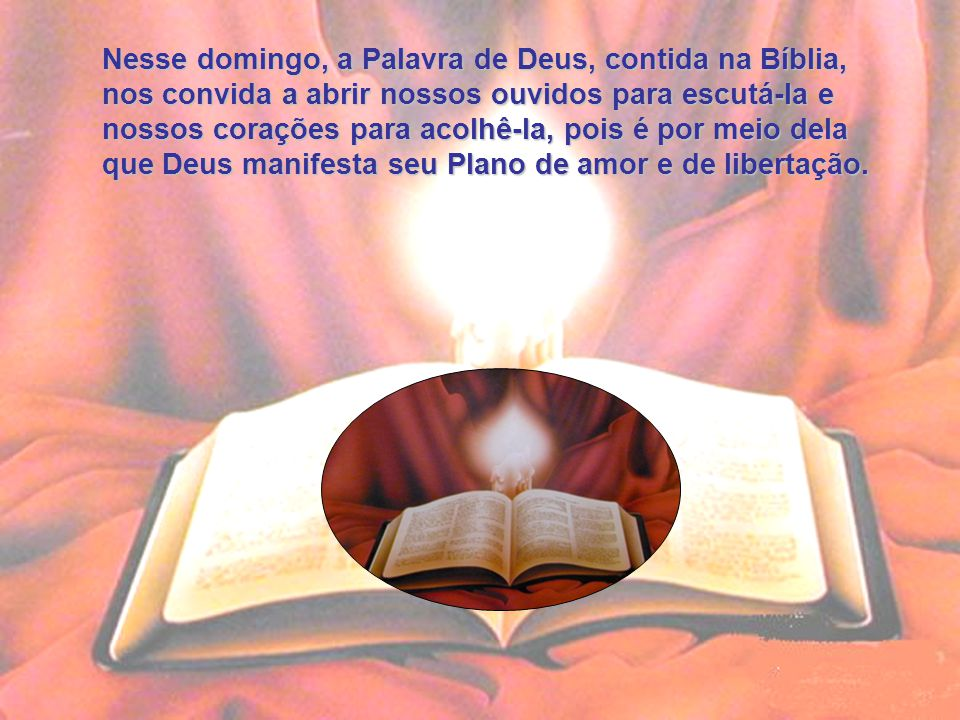 Nesse domingo, a Palavra de Deus, contida na Bíblia,