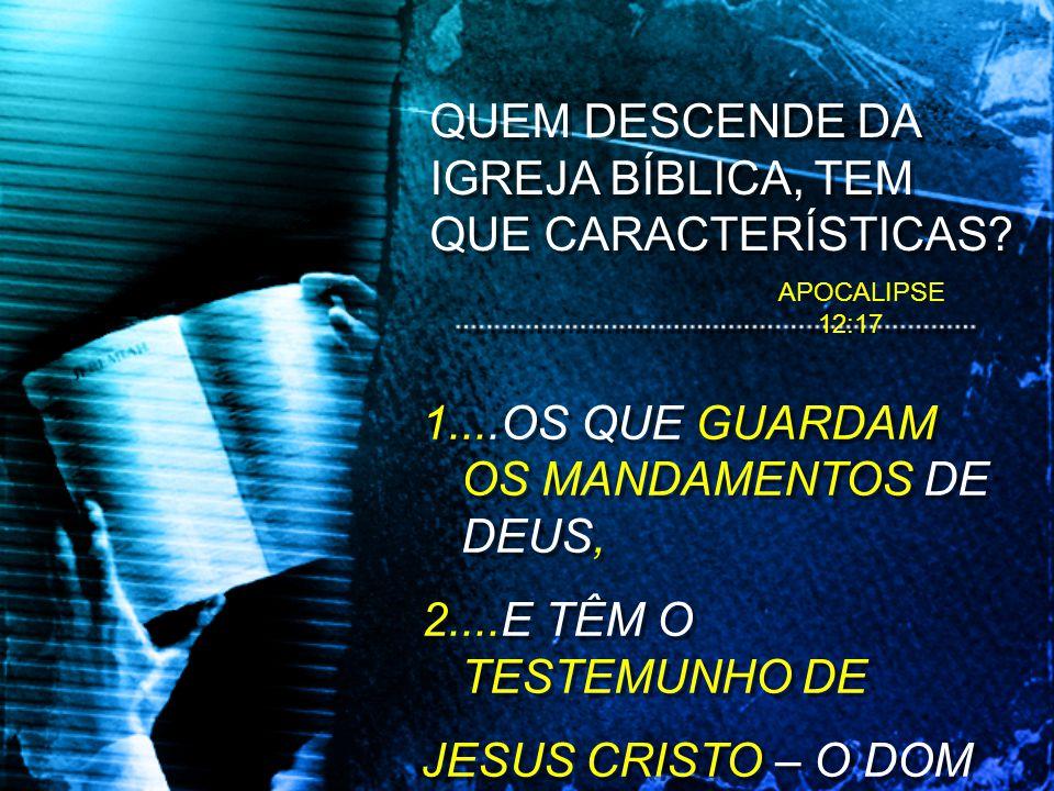 QUEM DESCENDE DA IGREJA BÍBLICA, TEM QUE CARACTERÍSTICAS