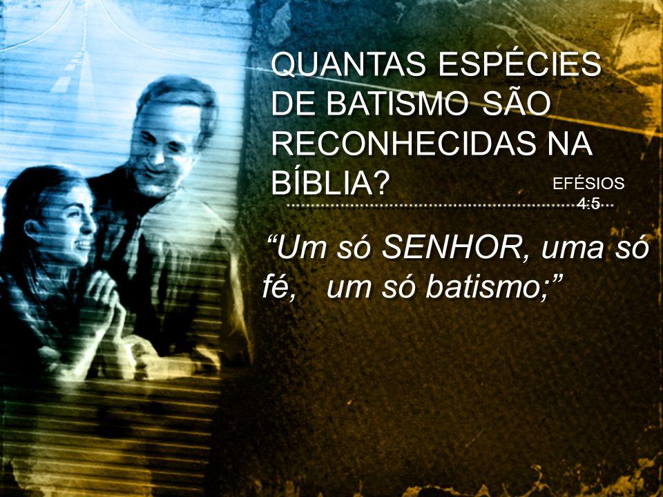 QUANTAS ESPÉCIES DE BATISMO SÃO RECONHECIDAS NA BÍBLIA