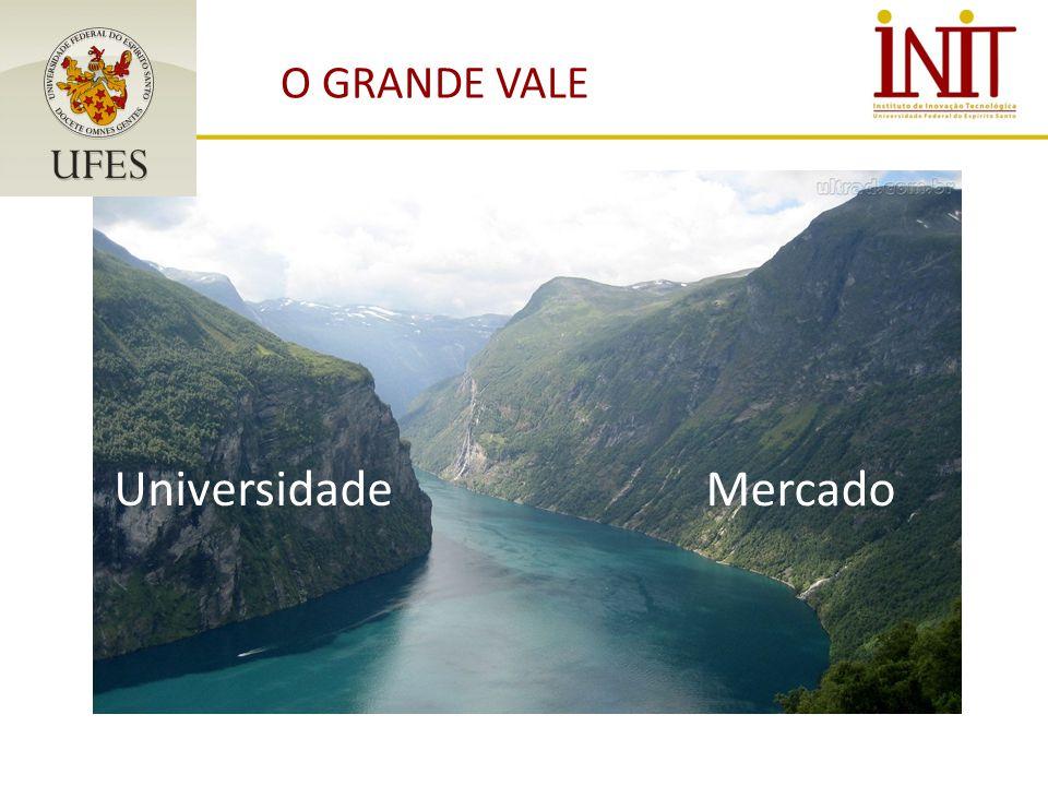 O GRANDE VALE Universidade Mercado