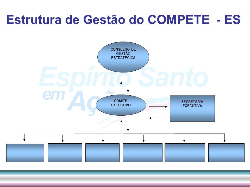 CONSELHO DE GESTÃO ESTRATÉGICA
