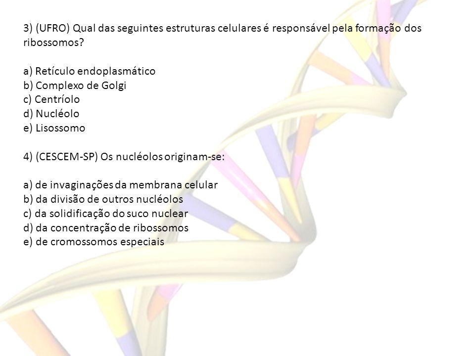 3) (UFRO) Qual das seguintes estruturas celulares é responsável pela formação dos ribossomos