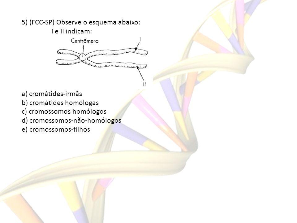 5) (FCC-SP) Observe o esquema abaixo: