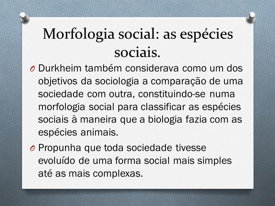Morfologia social: as espécies sociais.