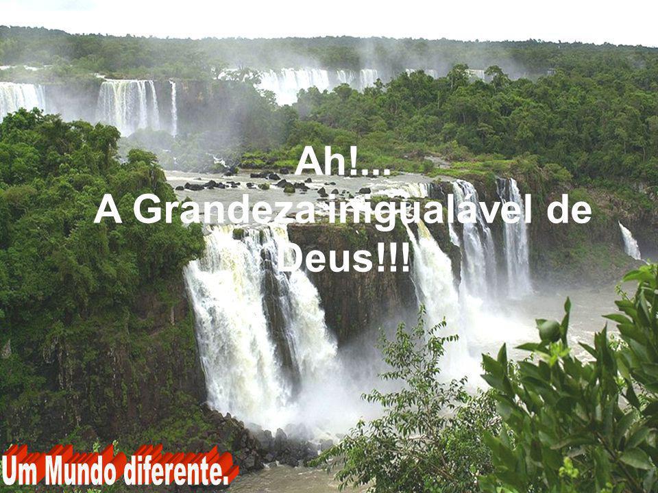 A Grandeza inigualável de Deus!!!