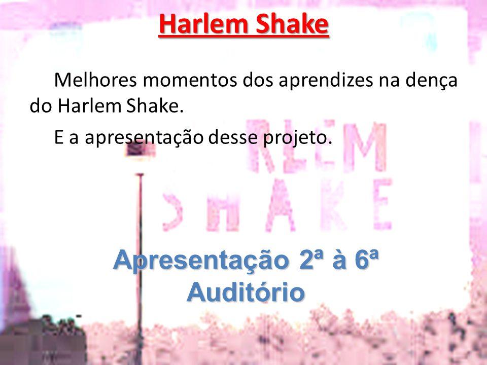 Harlem Shake Apresentação 2ª à 6ª Auditório