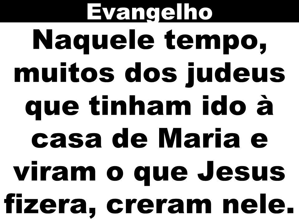 Evangelho Naquele tempo, muitos dos judeus que tinham ido à casa de Maria e viram o que Jesus fizera, creram nele.