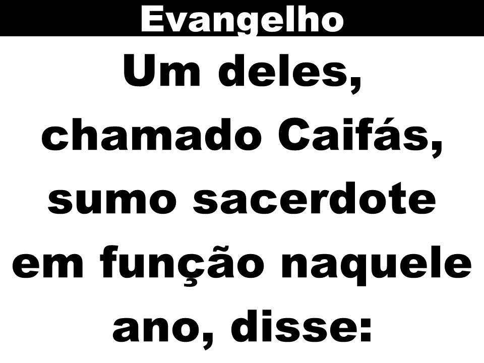 Um deles, chamado Caifás, sumo sacerdote em função naquele ano, disse: