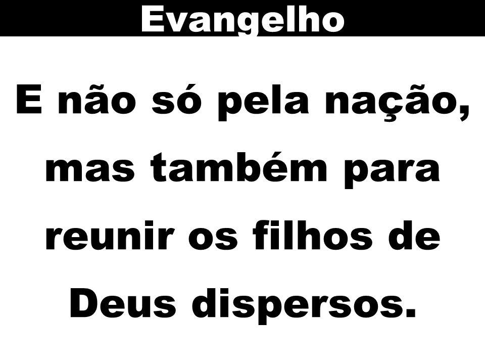 Evangelho E não só pela nação, mas também para reunir os filhos de Deus dispersos.