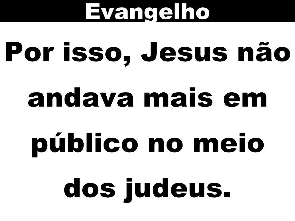Por isso, Jesus não andava mais em público no meio dos judeus.