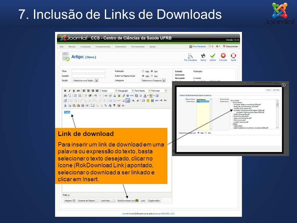 7. Inclusão de Links de Downloads