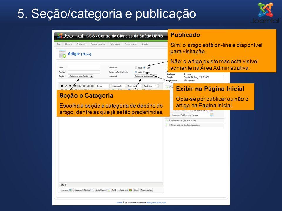 5. Seção/categoria e publicação