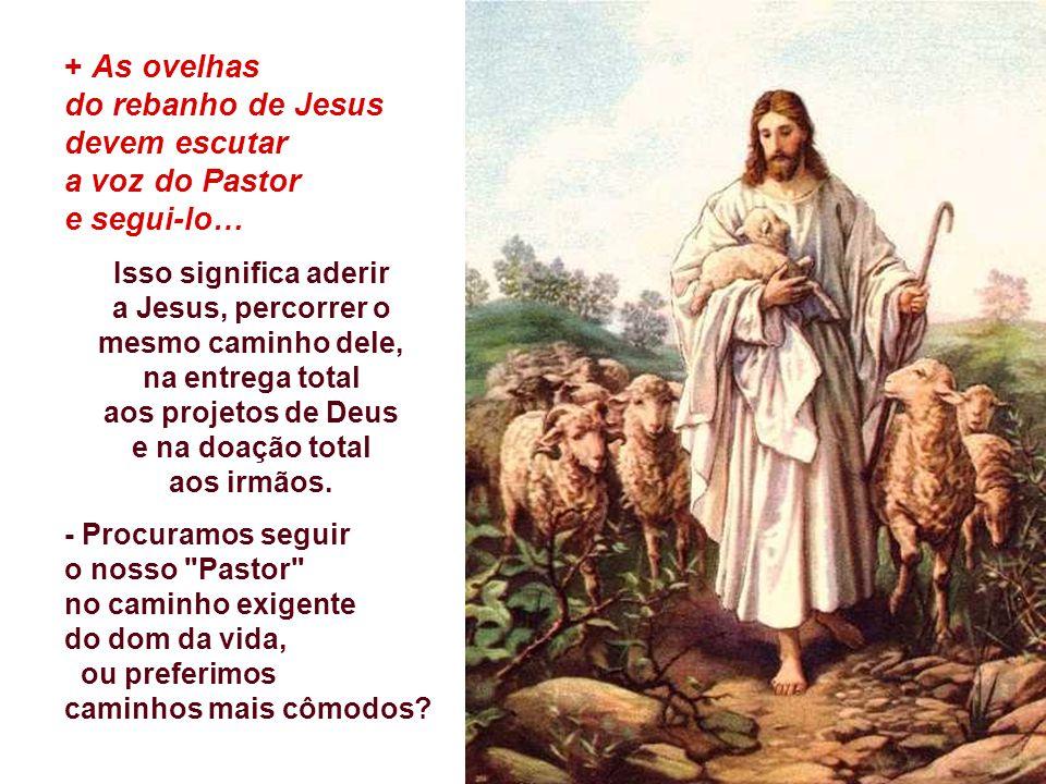 do rebanho de Jesus devem escutar a voz do Pastor e segui-lo…