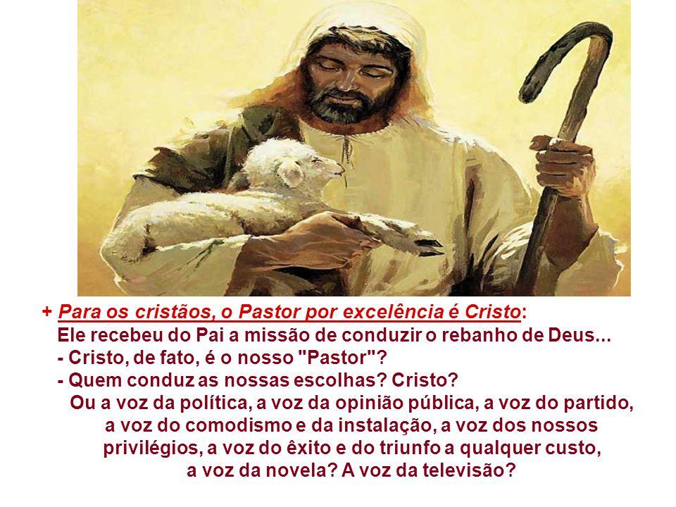 + Para os cristãos, o Pastor por excelência é Cristo: