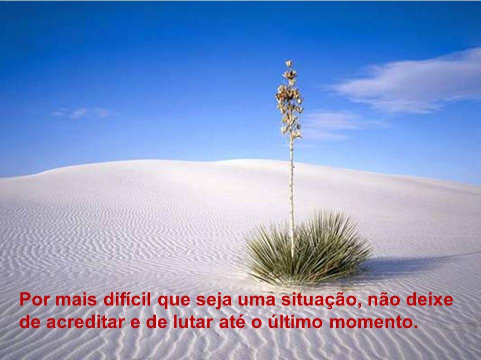 Por mais difícil que seja uma situação, não deixe de acreditar e de lutar até o último momento.