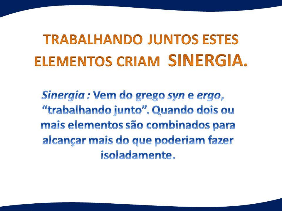 TRABALHANDO JUNTOS ESTES ELEMENTOS CRIAM SINERGIA.