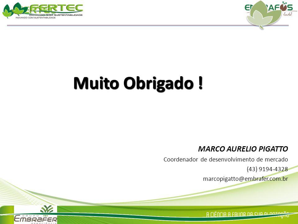 Muito Obrigado ! MARCO AURELIO PIGATTO