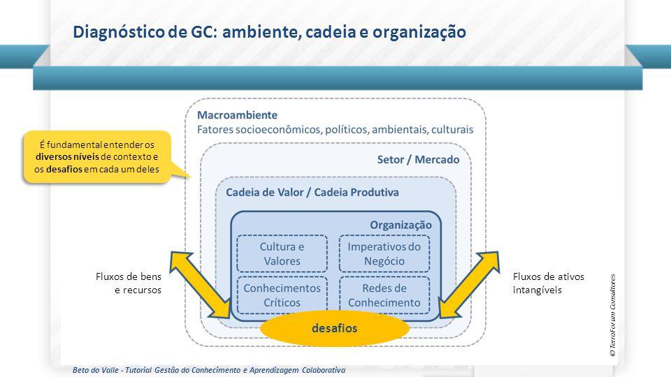 Diagnóstico de GC: ambiente, cadeia e organização