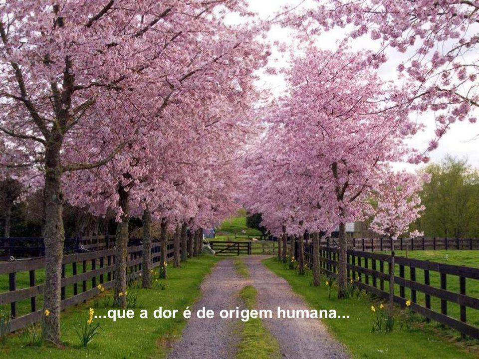 ...que a dor é de origem humana...