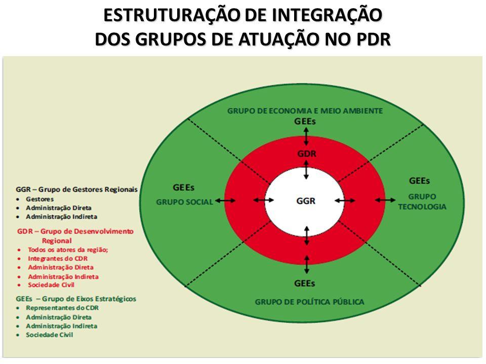 ESTRUTURAÇÃO DE INTEGRAÇÃO DOS GRUPOS DE ATUAÇÃO NO PDR