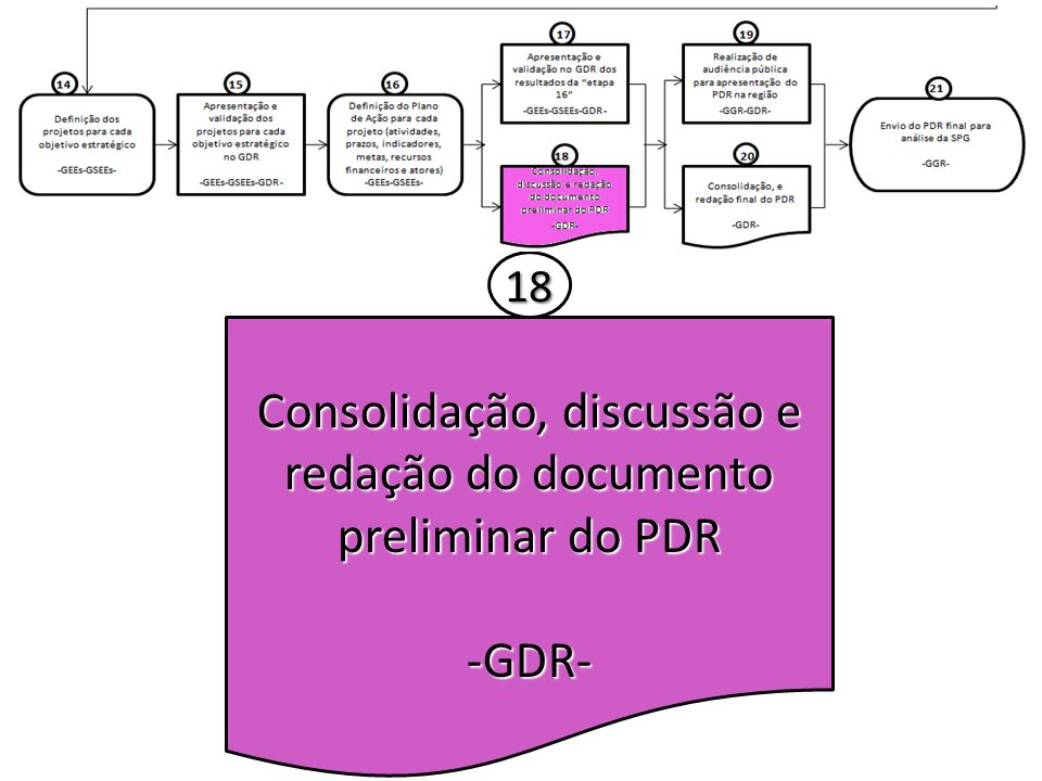 Consolidação, discussão e redação do documento preliminar do PDR