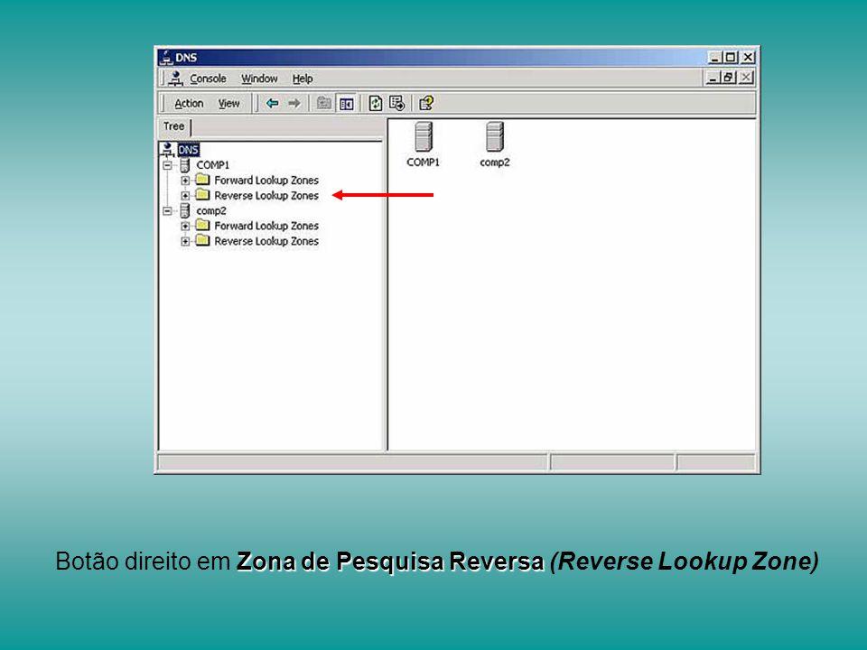 Botão direito em Zona de Pesquisa Reversa (Reverse Lookup Zone)