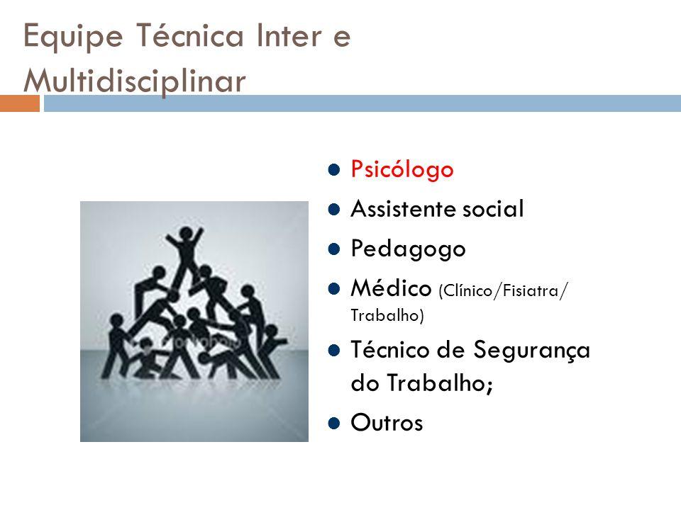 Equipe Técnica Inter e Multidisciplinar