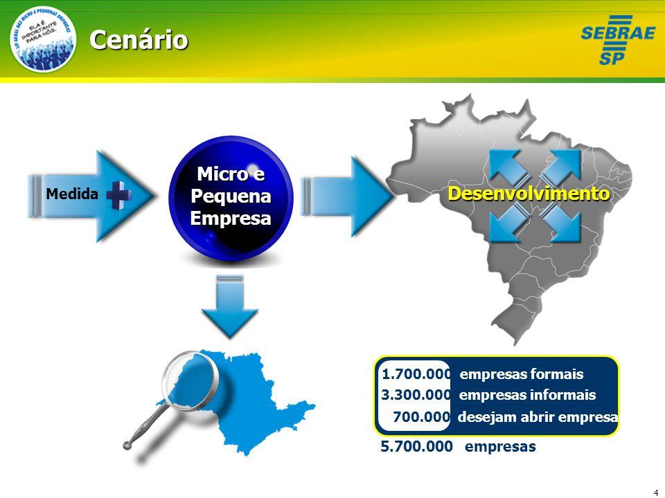 Micro e Pequena Empresa