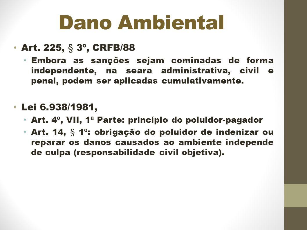 Dano Ambiental Art. 225, § 3º, CRFB/88 Lei 6.938/1981,
