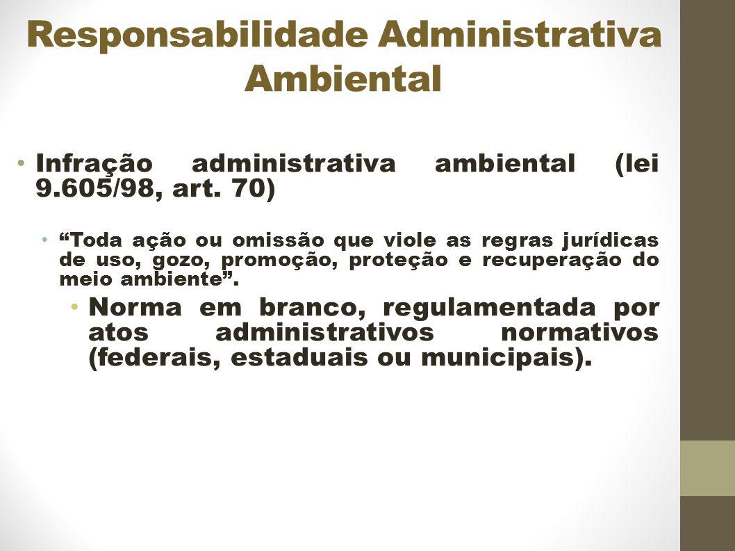 Responsabilidade Administrativa Ambiental