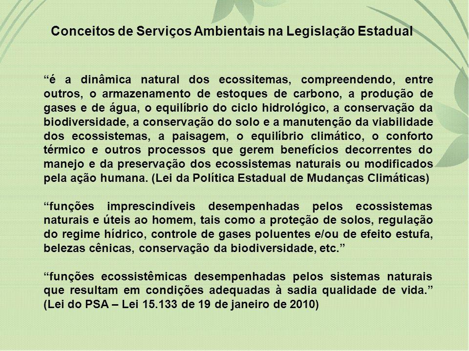 Conceitos de Serviços Ambientais na Legislação Estadual