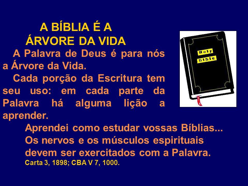 A BÍBLIA É A ÁRVORE DA VIDA