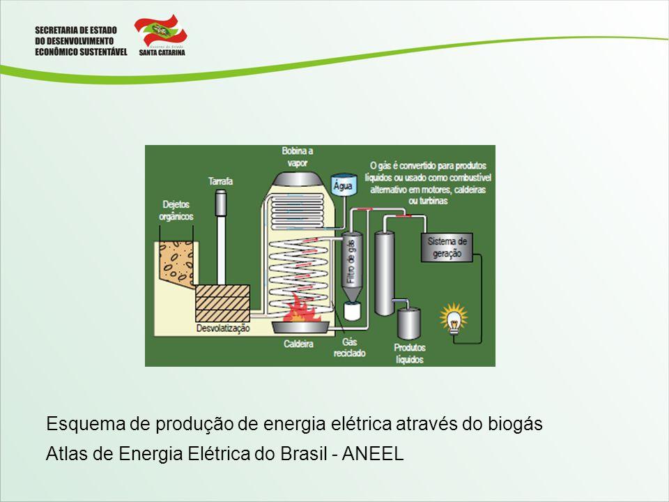 Esquema de produção de energia elétrica através do biogás