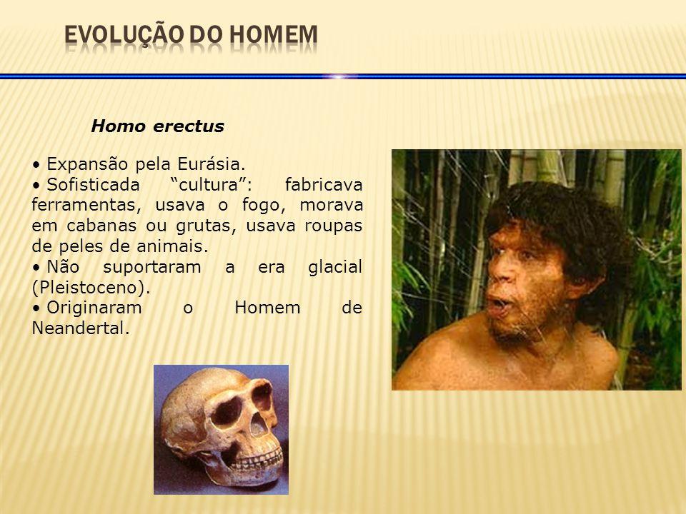 EVOLUÇÃO DO HOMEM Homo erectus Expansão pela Eurásia.