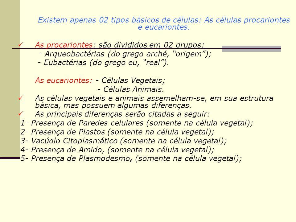 Existem apenas 02 tipos básicos de células: As células procariontes e eucariontes.