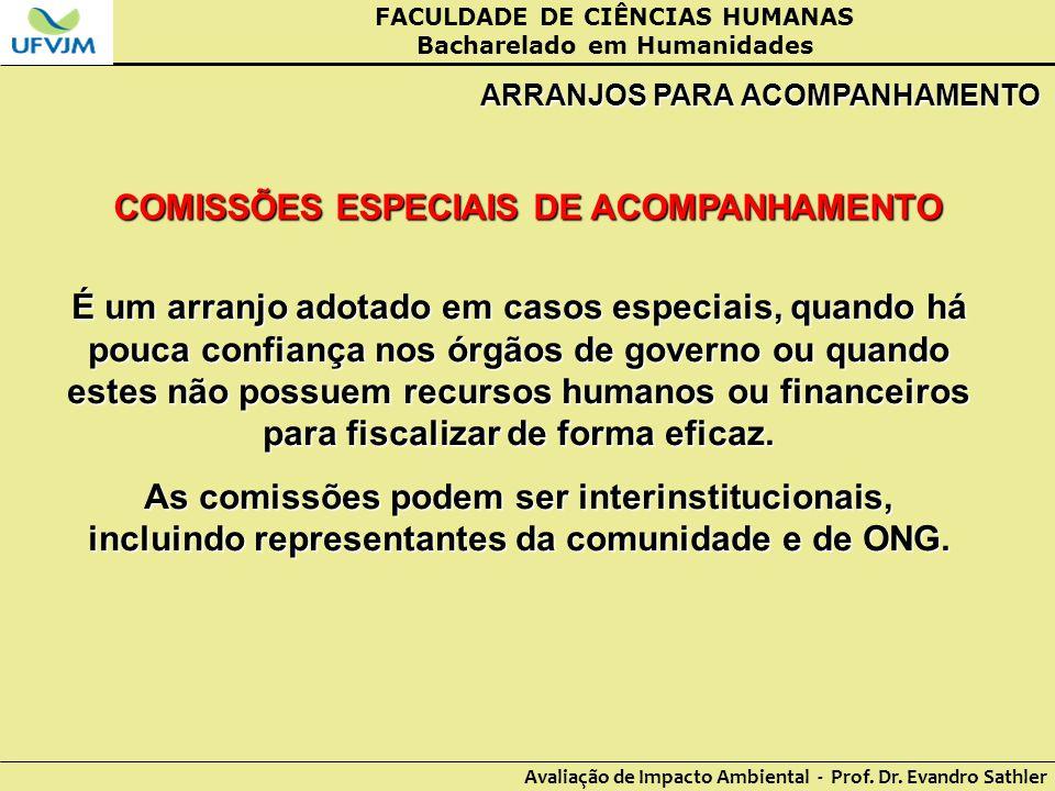 COMISSÕES ESPECIAIS DE ACOMPANHAMENTO