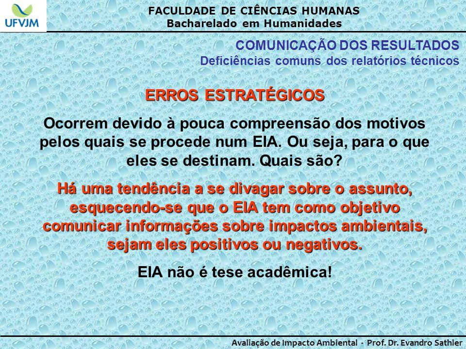 EIA não é tese acadêmica!